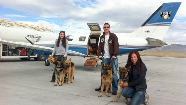 Homeless dogs from Oklahoma City were flown to new homes on the West Coast over the weekend. Online photo